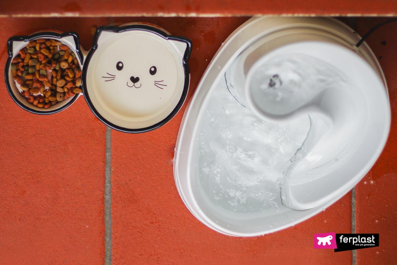 Gatto beve da fontanella Vega di Ferplast