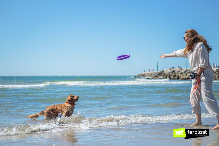Cane nell'acqua mentre gioca con la padrona con i giochi Ferplast