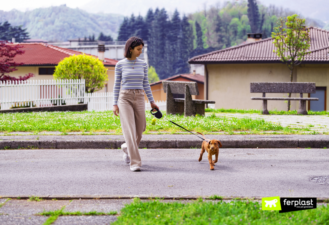 Cachorrinho-de-passeio-com-chumbo-retrátil-Flippy-One-da-Ferplast