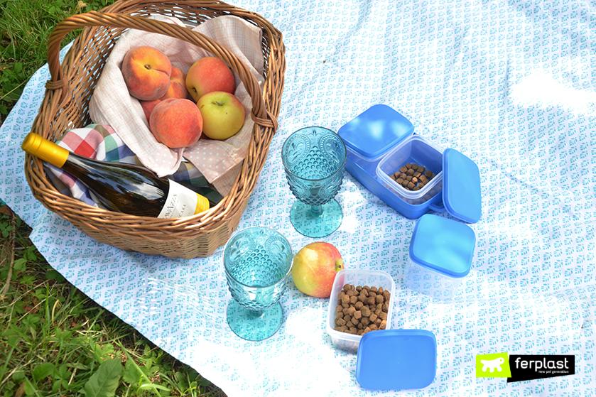 cosa_portare_picnic_lista