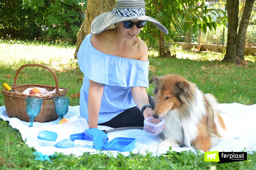 parco_picnic_cibo_frittata