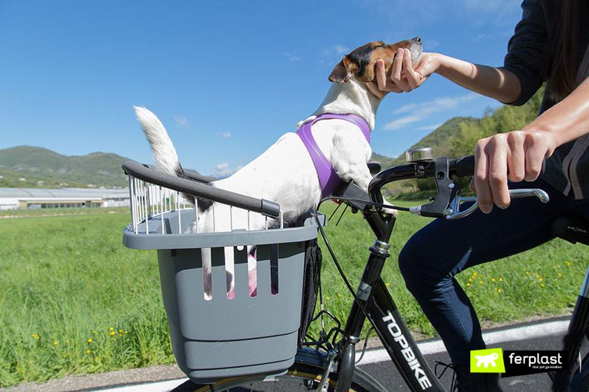 bicicletta_con_cane_cestino_ferplast