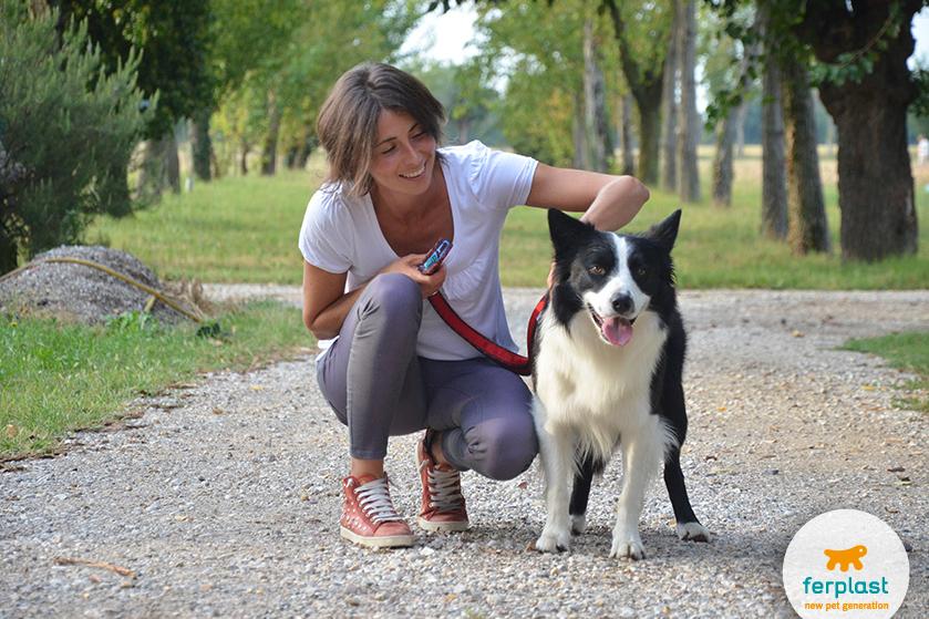 instructor_y_entrenador_de_perro_diferencia