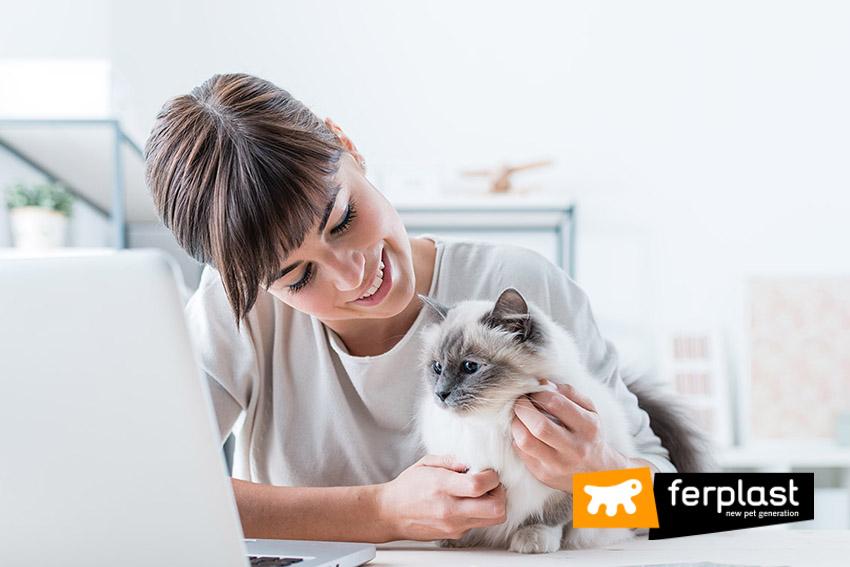 ferplast_blog_hablar_con_perro_y_gato
