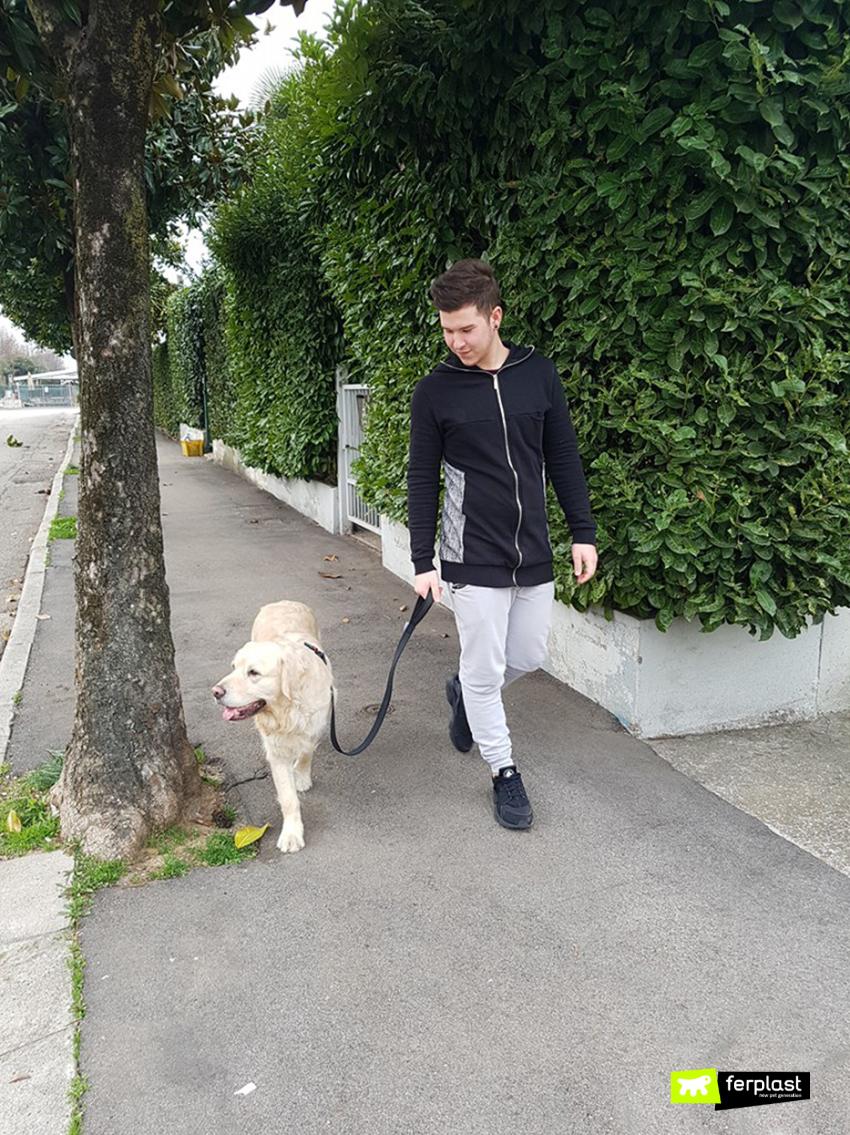 professione_dogsitter_responsabilit