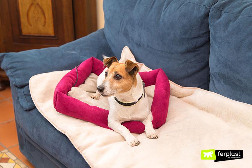 coperta_pelliccia_per_cani_piccoli