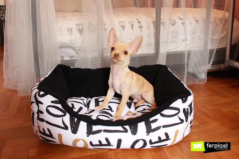 ferplast_coccolo_divanetto_per_cani_piccolo
