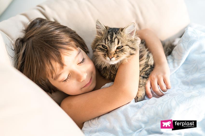 gatto_dormire_fusa_relax