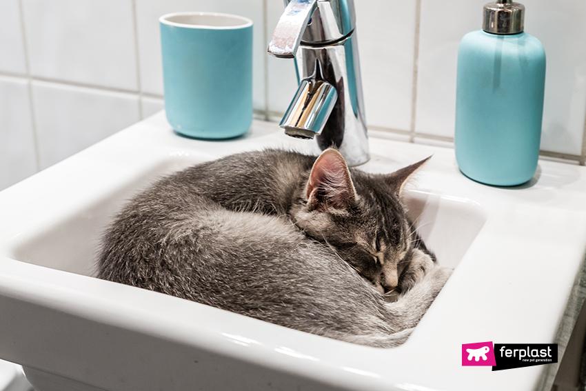 ferplast-gatti-dormono-tufli-cuccia