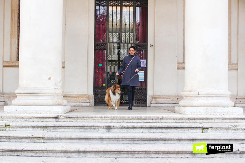ferplast-blog-levar-o-cão-no-museu-italiano-museu-cinema-turim-palácio-madama