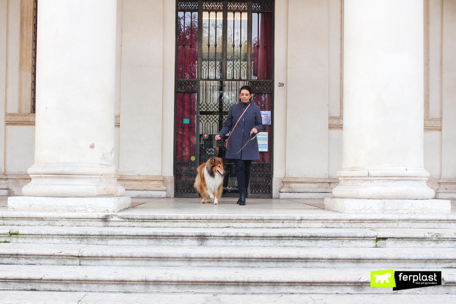 feplast2-blog-portare-il-cane-al-museo-in-italia-museo-cinema-torino-palazzo-madama