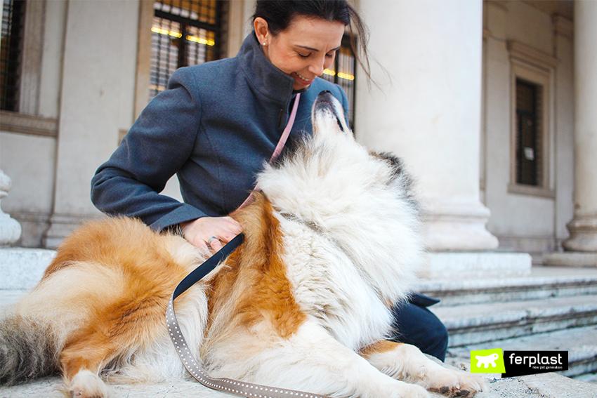 ferplast-blog-musei-italiani-accesso-cani-torino-milano-spoleto