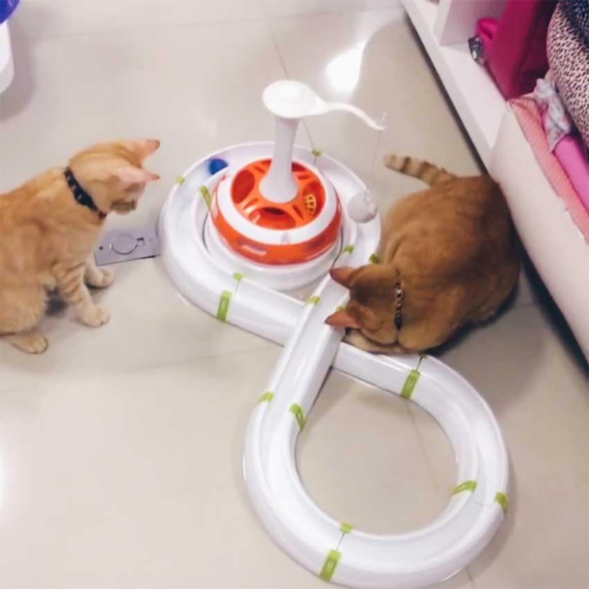 jogo-interativo-typhon-ferplast-felinos