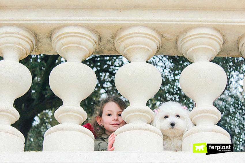 blog-ferplast-borse-per-cani-da-passeggio