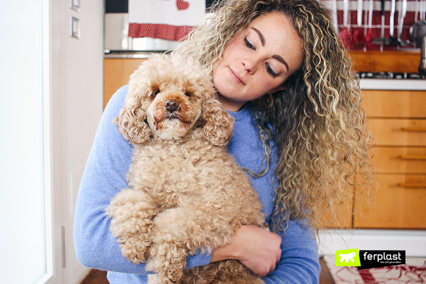 blog-ferplast-pulizie-cane-cibo-lindo