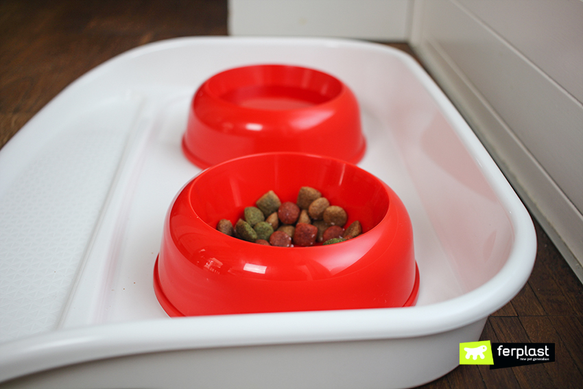 ferplast-blog-cane-casa-pulita-cibo