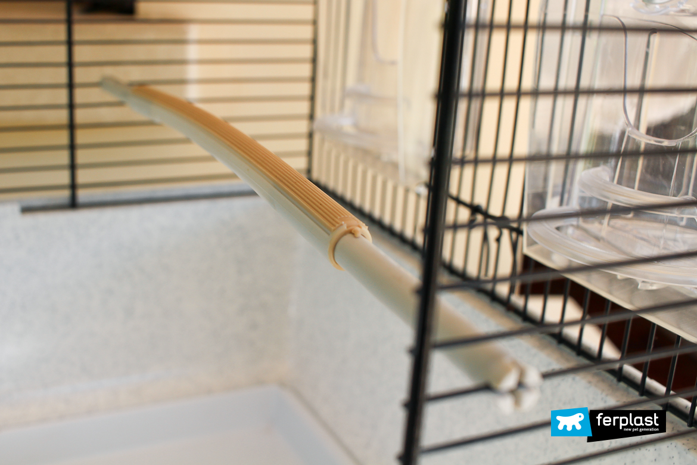 ferplast-blog-uccelli-gabbia