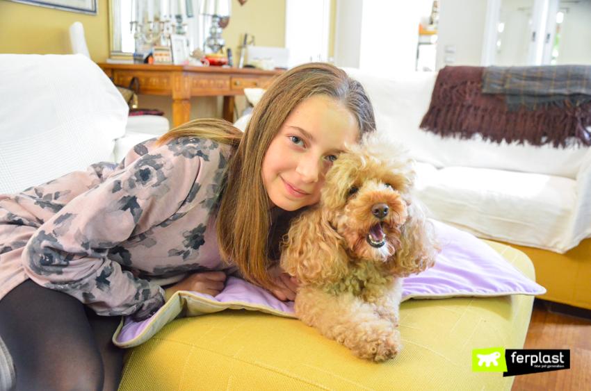 ferplast-petlovers-собака-в-своих-помещениях