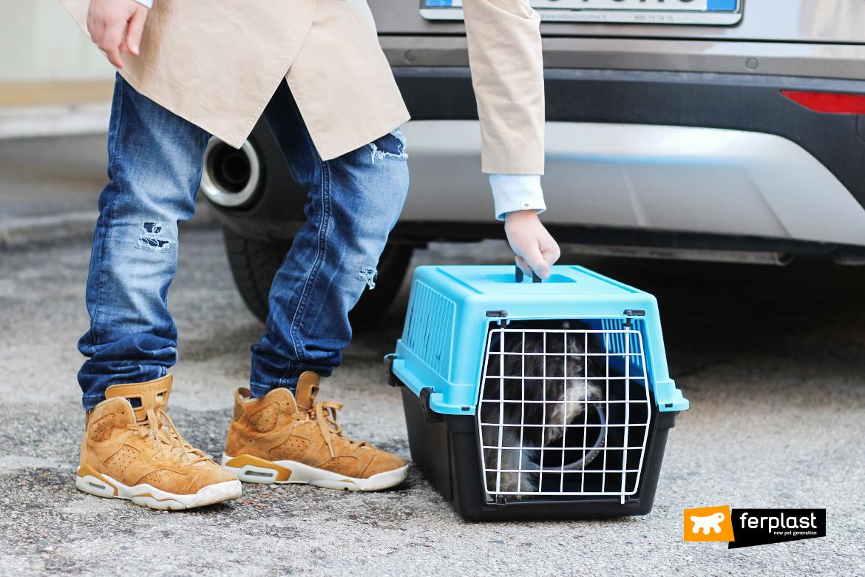 ferplast-trasportino-atlas10-cani