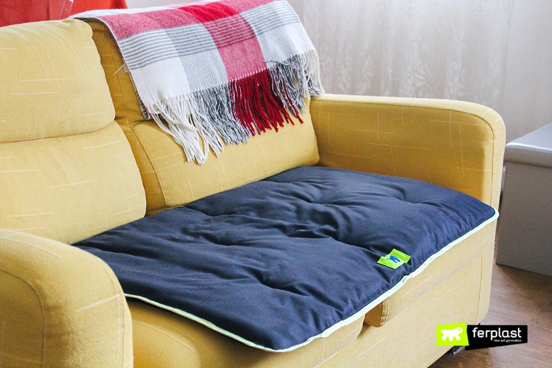 Come usare il materassino per cani love ferplast - Perche i cani scavano sul divano ...
