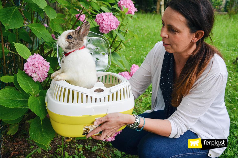 пасхальный 2018 кролики любопытство