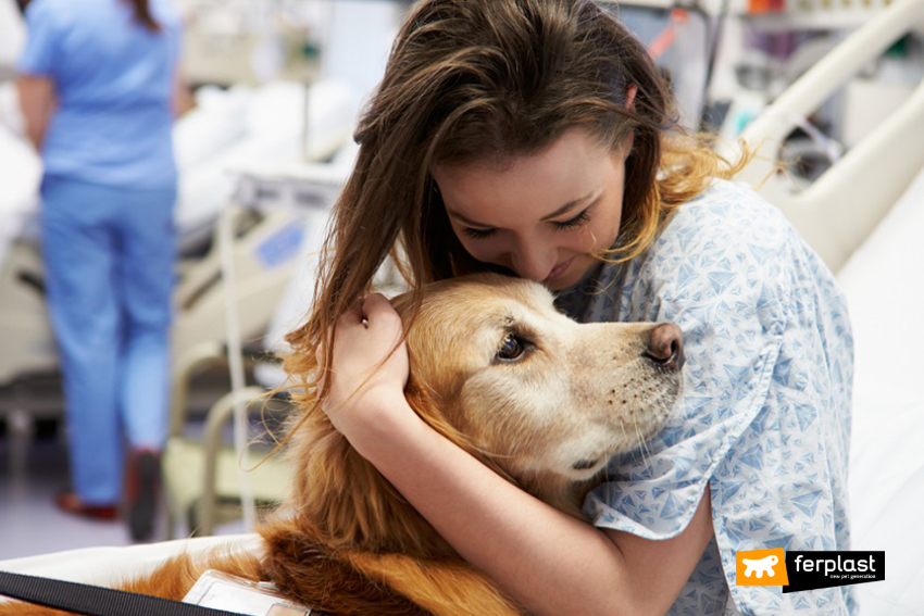 pet_therapy_benefici