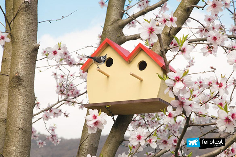 uccellini-migrazione-primavera-nido-esterno