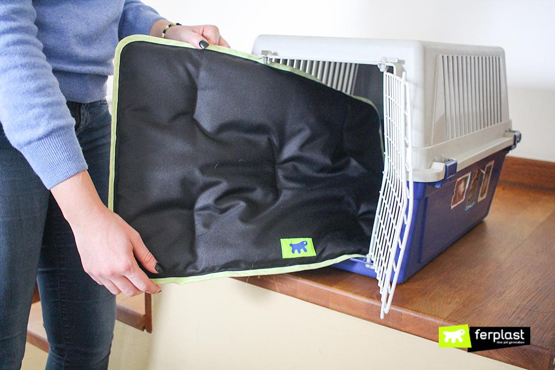 usare-materassino-jolly-macchina-trasportino-cane