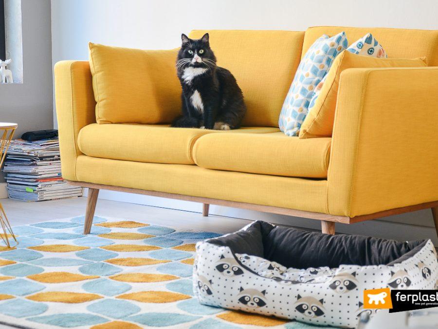 Home design scegliere l 39 arredamento eclettico per il salotto for Arredamento stile eclettico