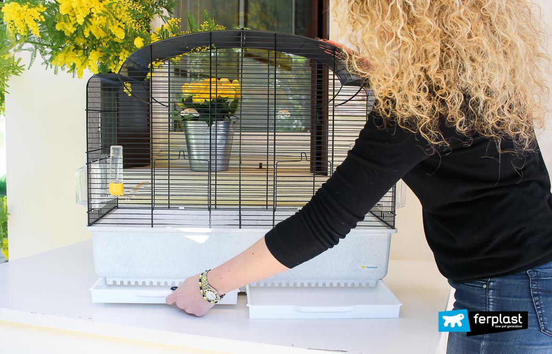 preparar eclosão para pássaros ferplast