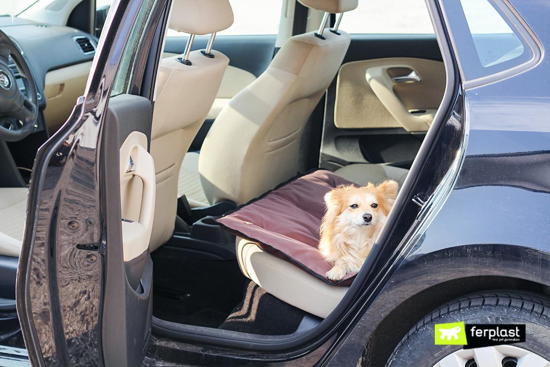 jolly almofada para caes de carro