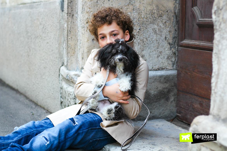 ходить с Болонка собака
