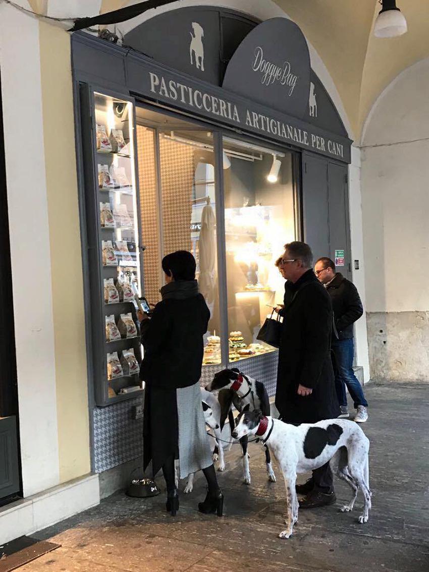 confeitaria cães brescia doggyebag