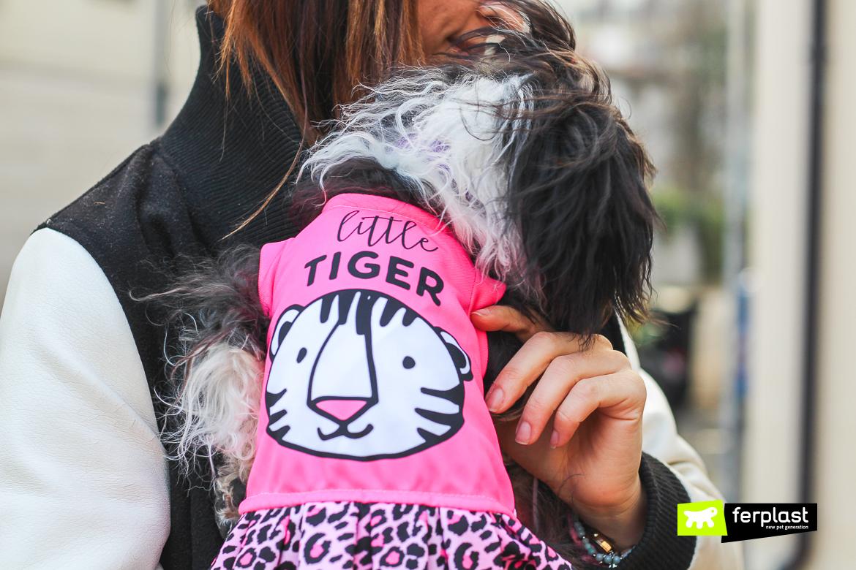 футболок для собаки мода