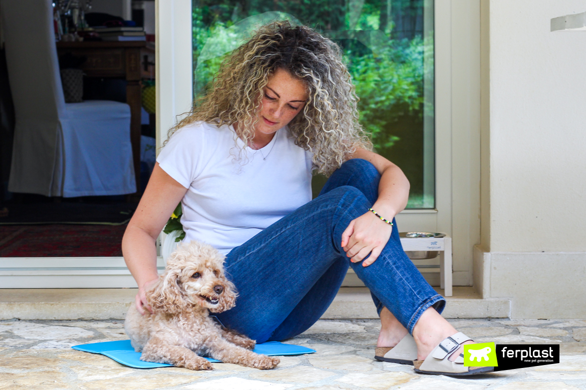 Ferplast pet cool mat
