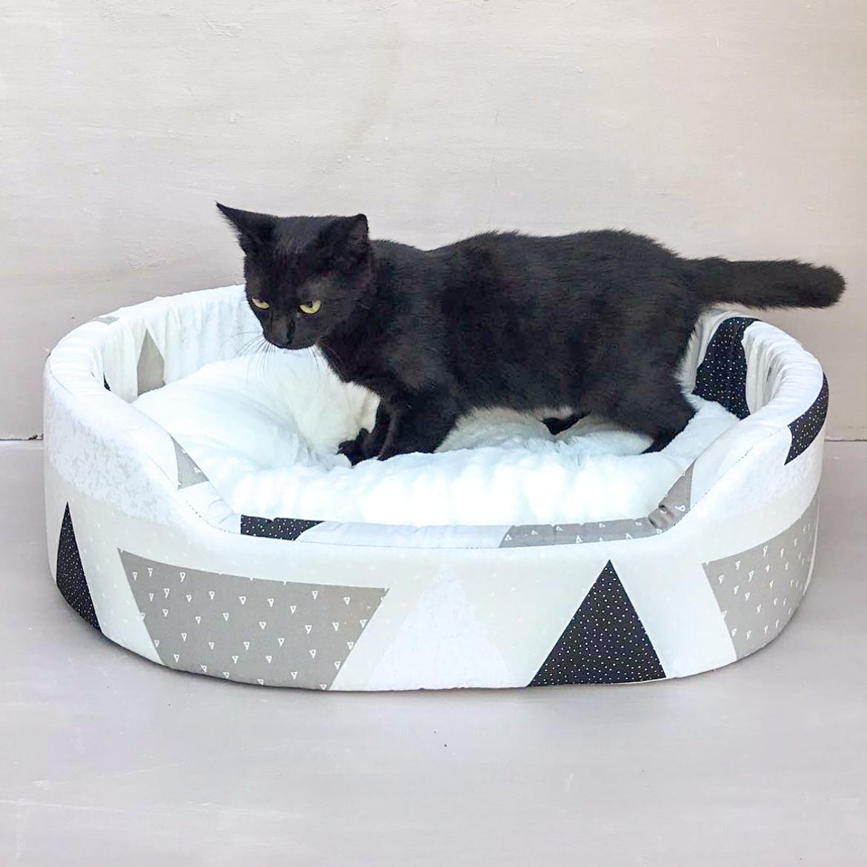 best of instagram cat ferplast
