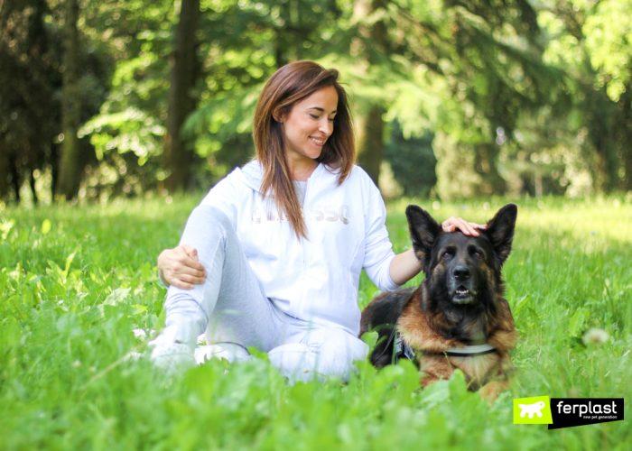 AGILITY DOG: 5 ESERCIZI DA FARE CON IL CANE