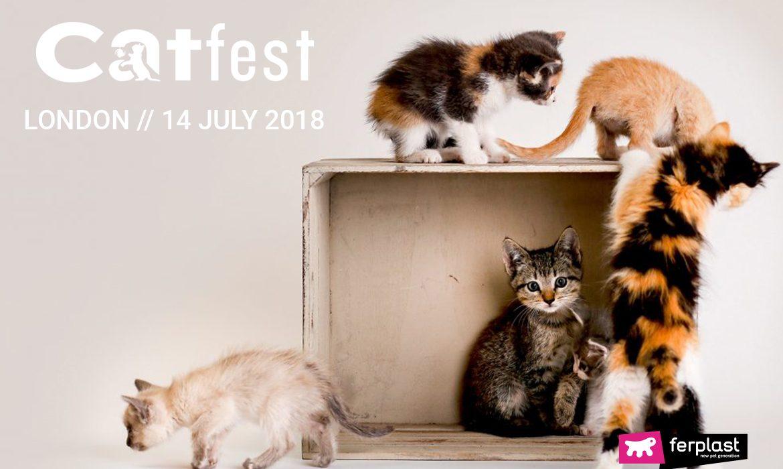 CATFEST 2018, IL FESTIVAL DEI GATTI DI LONDRA