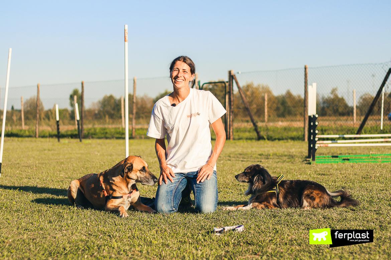 treinar um cão para não puxar a guia