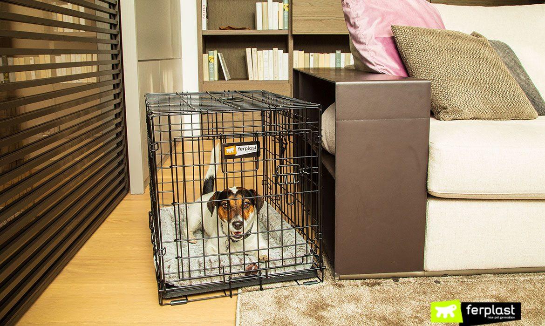 THE DOG INN PEN FOR DOGS BY FERPLAST, BUYER'S GUIDE