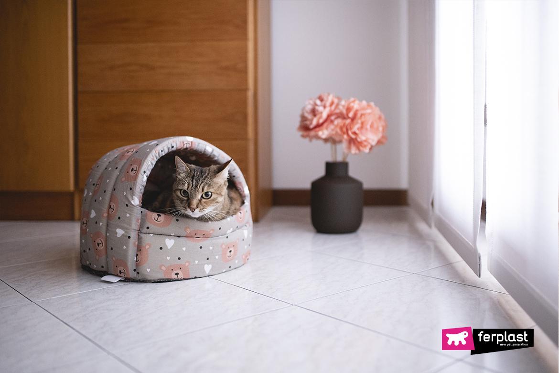 Домик в форме иглу для кошек