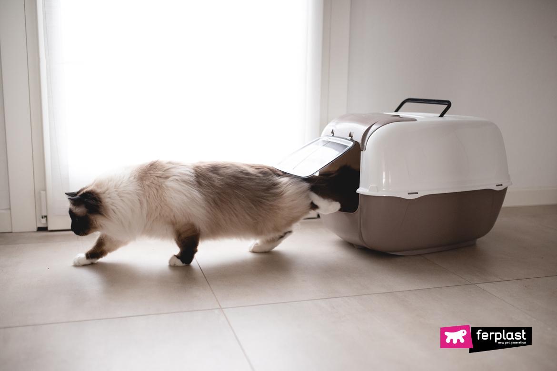 туалет для кошек Ferplast