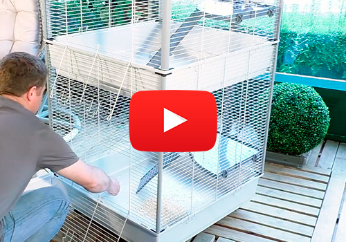 FURET TOWER: HOUSE FOR FERRETS