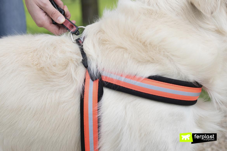 Dettaglio pettorina per cani Agila Reflex