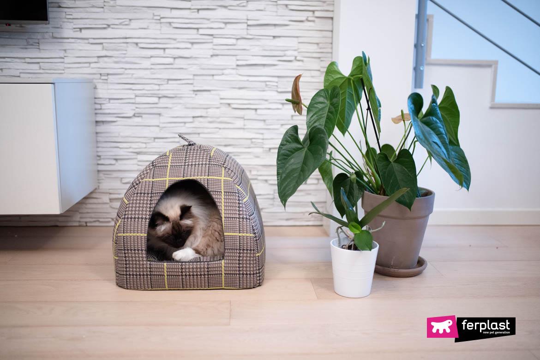 cama de gato chique ferplast esconder