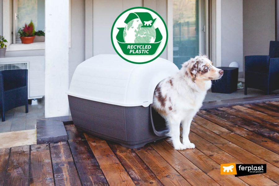 reciclado casa de plástico ferplast canil reciclagem do plàstico