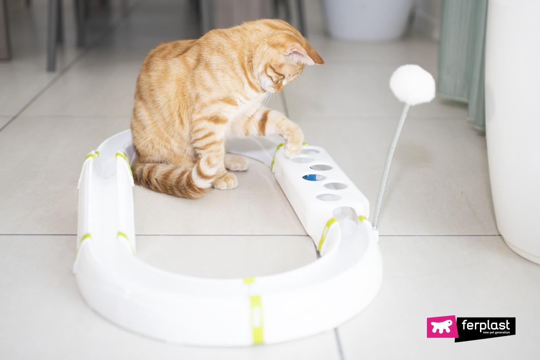 интерактивная игра в кошки ferplast