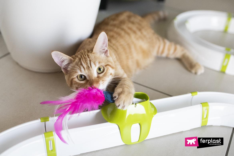 кот играет ферпласт пуховое одеяло