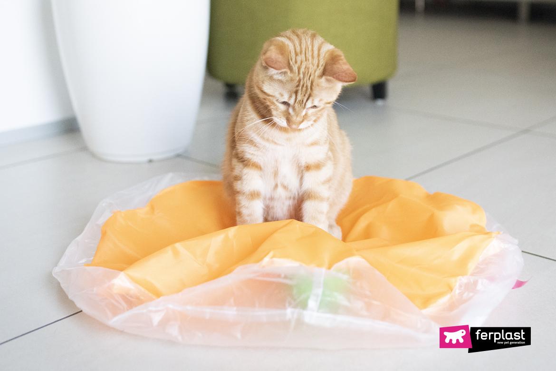 интерактивная игра с кошками
