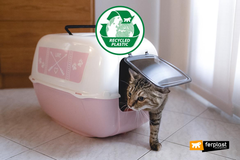 Reciclado Plástico lixo Ferplast eco sustentável empresa
